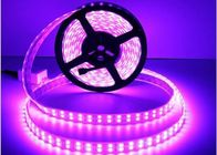 Cina Lampu LED Strip Fleksibel 5050 RGB DC12V / DC24V Double Line 28.8W / M Power pabrik